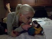 WМы продаем очень дружелюбный синий и золотой попугаев ара.